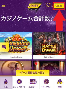 ラッキーカジノの登録手順の画像