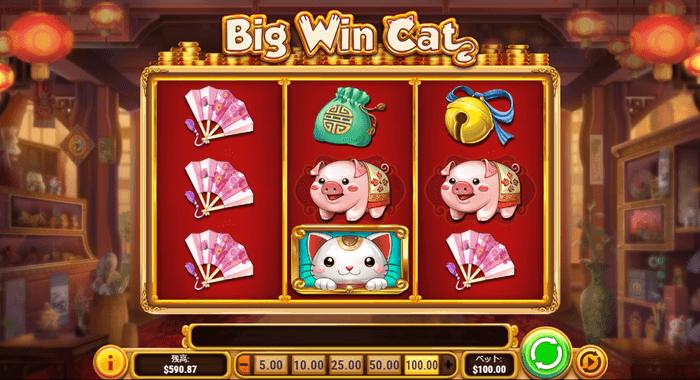 Big Win Catの画像