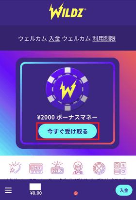 ワイルズカジノの登録手順の画像
